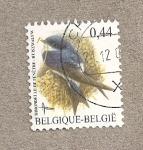 Sellos de Europa - Bélgica -  Golondrinas