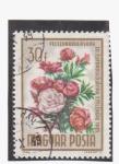 Stamps Hungary -  serie plantas