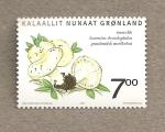 Stamps Greenland -  Setas de Groenlandia