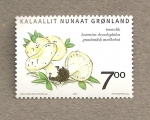 Stamps Europe - Greenland -  Setas de Groenlandia