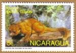 Sellos de America - Nicaragua -  CUYUZ