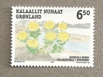 Stamps Europe - Greenland -  Rhodiola rosea