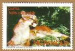 Stamps America - Nicaragua -  PUMA