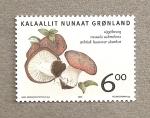 Stamps Europe - Greenland -  seta Russula subrubens