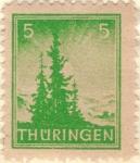Sellos de Europa - Alemania -  ALEMANIA 1945 (M SBZ1) Navidad Turingia 5