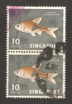 Sellos del Mundo : Asia : Singapur : pez rasbora heteromorpha