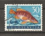 Stamps Yugoslavia -  Serranus Scriba