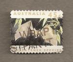 Sellos de Oceania - Australia -  Murciélago fantasma