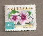 Sellos de Oceania - Australia -  Planta Ipomea pes-capra