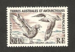 Stamps Europe - French Southern and Antarctic Lands -  skuas