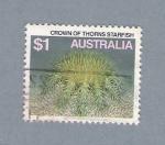 Sellos de Oceania - Australia -  Crown of Thorns Starfish