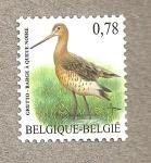 Stamps Belgium -  Aguja colinegra