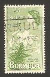 Stamps America - Bermuda -  elizabeth II, flor de lis