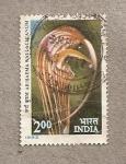 Sellos de Asia - India -  Arisaema