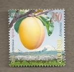 Stamps Asia - Armenia -  Albaricoque