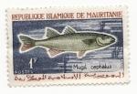 Stamps Mauritania -  Mugil Cepbalus
