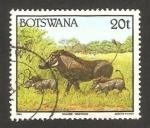 Sellos del Mundo : Africa : Botswana : fauna salvaje, phacocheres