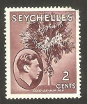 Stamps Africa - Seychelles -  George VI, Palmera