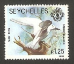 Stamps Africa - Seychelles -  fauna, sternie blanche