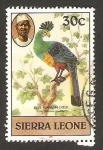 Stamps Africa - Sierra Leone -  ave, corythaeola cristata