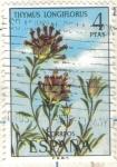 Sellos de Europa - España -  ESPANA 1974 (E2222) Flora - Thymus longiflorus 4p
