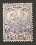 Stamps America - New Foundland -  fauna, reno o caribu