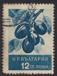 Sellos de Europa - Bulgaria -  Ciruelas