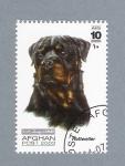 Sellos del Mundo : Asia : Afganistán : Rottweiler