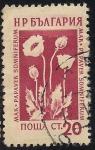 Sellos de Europa - Bulgaria -  Flores Medicinales: Adormidera