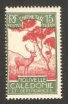 Sellos de Oceania - Nueva Caledonia -  30 - fauna, ciervo
