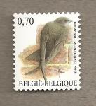 Sellos de Europa - Bélgica -  Vencejo negro
