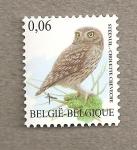 Sellos de Europa - Bélgica -  Lechuza