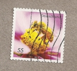 Stamps Germany -  Abejas