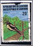 Sellos de Africa - Camerún -  Hirondelie