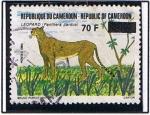 Stamps Cameroon -  Leopardo