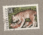 Stamps Russia -  Lince con crías