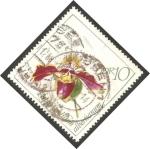 Stamps Germany -  Orquídea paphiopedilum albertianum