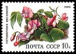 Stamps Russia -  OROBUS VERMUS