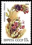 Stamps Russia -  PULMONARIA OBSCURA
