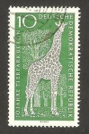 Stamps Germany -  10 anivº de la reconstrucción del zoo de berlin, jirafa