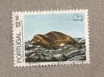 Sellos de Europa - Portugal -  Lobo marino