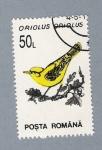 Stamps Romania -  Oriolus Oriolus