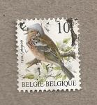 Stamps Belgium -  Pinzón