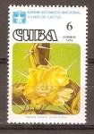 Sellos de America - Cuba -  OPUNTIA  MILITARIS