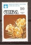 Sellos de America - Cuba -  CYLINDROPUNTIA  HYSTRIX