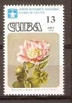 Stamps Cuba -  RHODOCACTUS  CUBENSIS