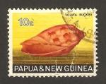 Sellos del Mundo : Oceania : Papúa_Nueva_Guinea : Caracola voluta ruckeri
