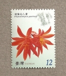 Stamps Asia - Taiwan -  Flor de cactus