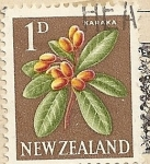 Stamps Oceania - New Zealand -  Fruta Karaka