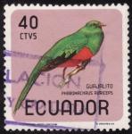 Sellos del Mundo : America : Ecuador : PHAROMACHRUS AURICEPS(guajalito)